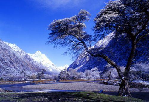 都无法满足我想深入了解那些美丽风景下掩藏着的藏,回,羌混居风土人情