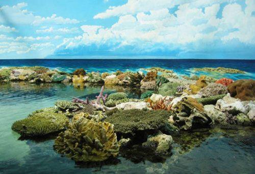 大堡礁 倒计时:8年