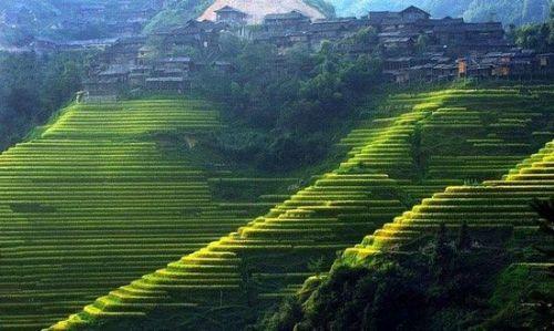 许多人都知道桂林山水甲天下,却不一定知道在这秀美如画的山水间还有