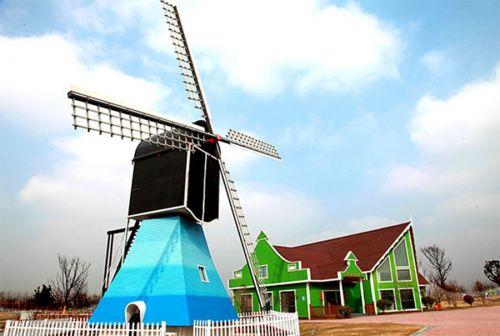 风车情侣馆是荷兰花海独一无二的标志性建筑.