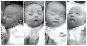 赵颜生下的可爱四胞胎,从左至右依次为老大、老二、老三、老四。宁波晚报供图