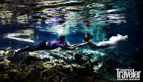 壁纸 海底 海底世界 海洋馆 水族馆 500_288