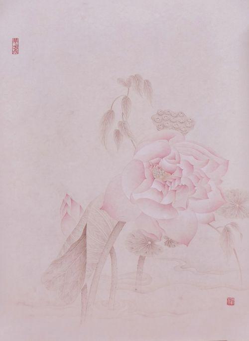 《红荷》 30X40cm 纸本 2013年
