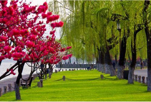 三底月至六月初西湖边赏桃花,间株杨柳间株桃是西湖春天景致的最佳