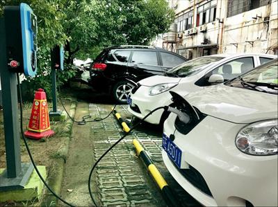 在黄河路港澳城租赁网点,共享汽车正在专用泊位上充电。见习记者 朱琪摄